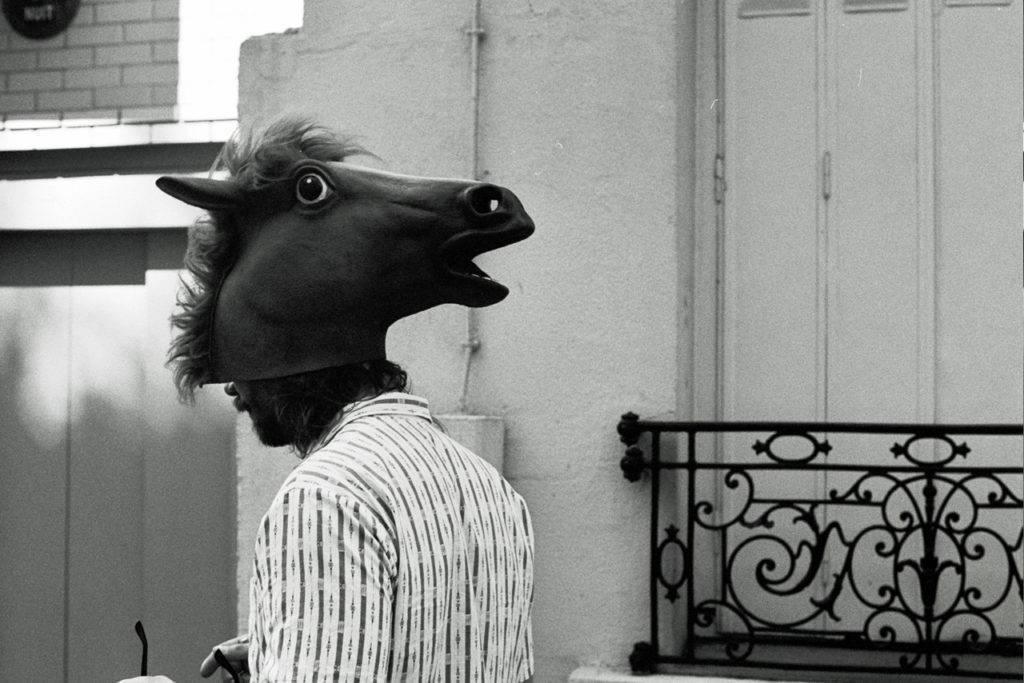 arnaud-riviere-tete-cheval